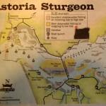 Река Снейк карта местности