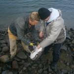 Рыбалка на реке Снейк США